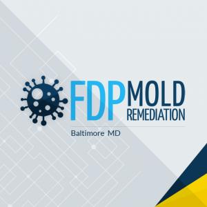 LogoFDP_Mold_Remediation.png