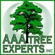 aaa tree expert logo.jpg