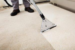 Absolute Carpet Care (4).jpg