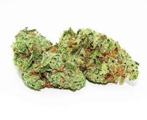 Amnesia Haze (Sativa – Dried Cannabis) - Ganja Group.jpg
