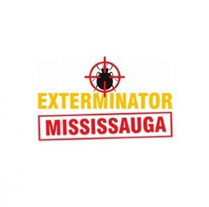 Bed-Bug-Exterminators-Mississauga-webq.jpg