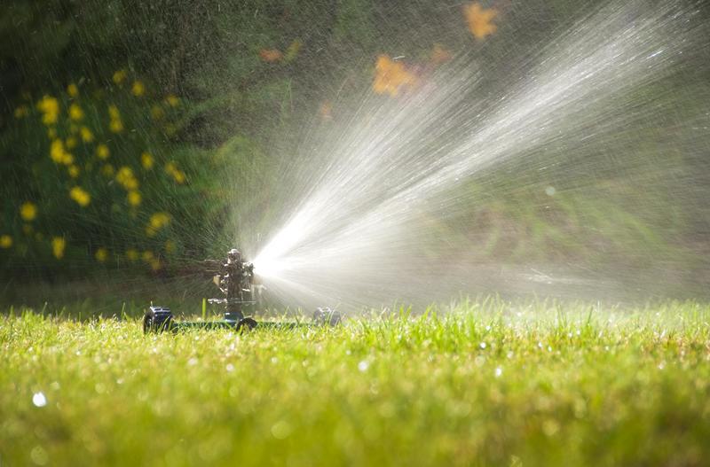 sprinkler-repair-tampa-new-sprinkler-installation-2.jpg