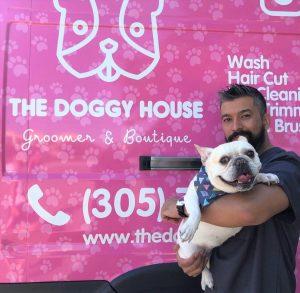 mobile dog grooming miami-1.jpeg