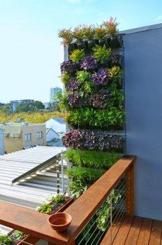 Vertical Gardens Melbourne.jpg