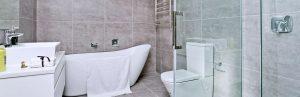 bathroom renovator.jpg