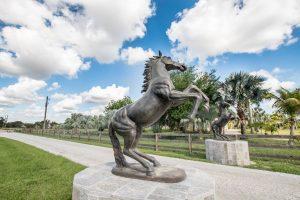 wellington_equestrian_realty.jpg