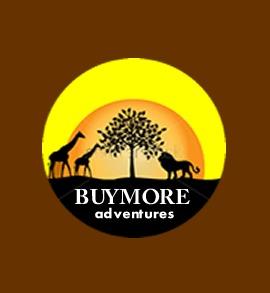 BuyMore Adventures.jpg