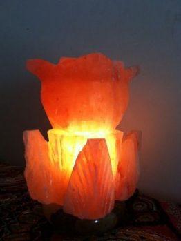 FANCY DOUBLE FLOWER SHAPED HIMALAYAN SALT LAMP ROCK CRYSTAL UNIQUE IONIZER.jpg