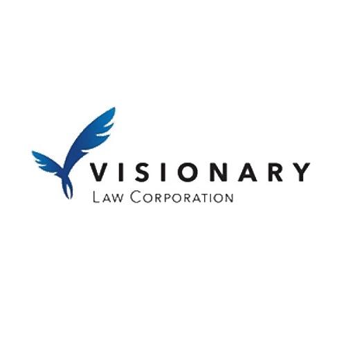 Visionary Law 5.jpg