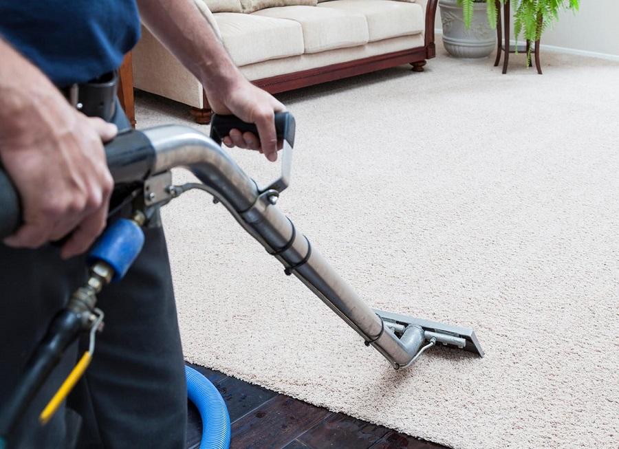 carpet cleaning in Tampa.jpg
