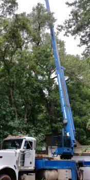 crane-service.jpg