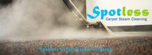 Carpet-Steam-Cleaning-Perth.jpg