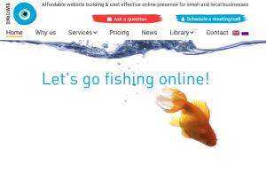 Dimacowebsite screenshort.png