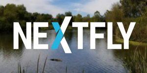 Phoenix Web Design.jpg