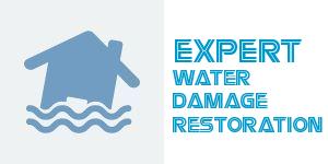 water_damage_restoration_dallas_logo.jpg