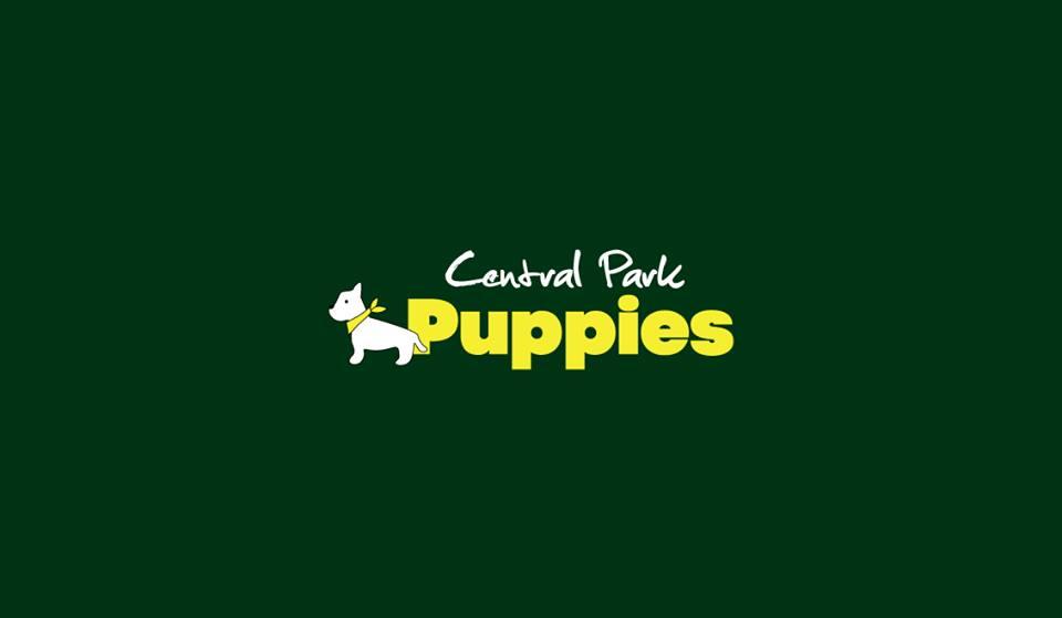 Central Park Puppies (1).jpg