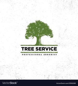 professional-arborist-tree-care-service-organic-vector-19562260