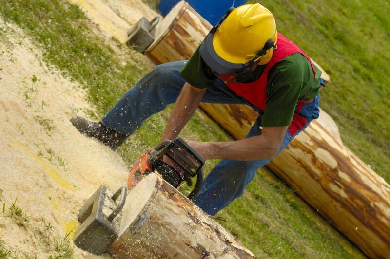 slc-tree-service-pros-tree-removal-2.jpg