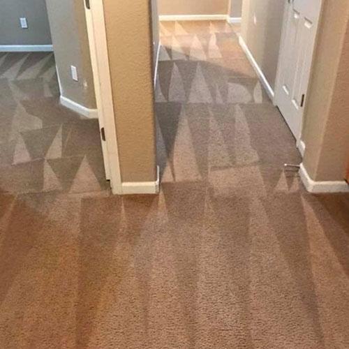 Clean-Sleep-Carpet-Cleaning-1.jpg