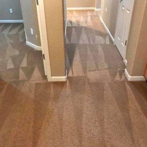Clean-Sleep-Carpet-Cleaning-4.jpg