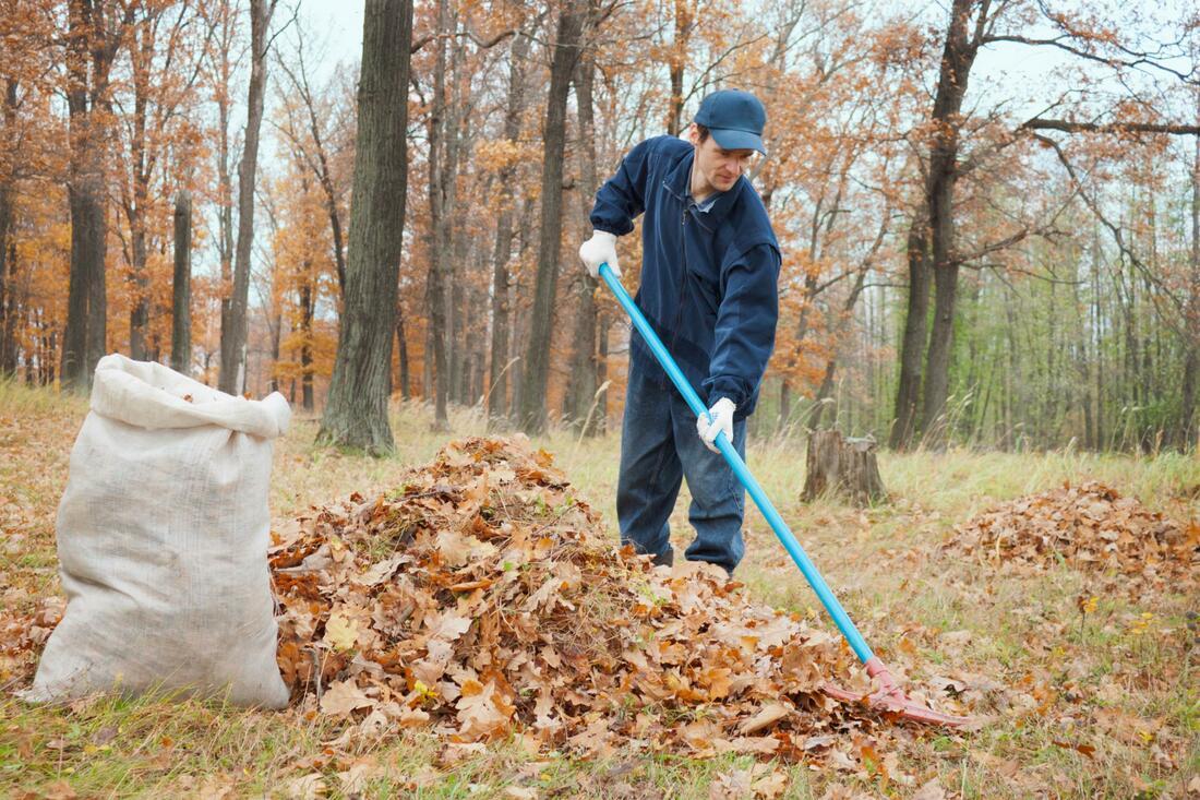 leander-landscaping-pros-leaf-removal-1_orig.jpg