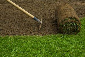 leander-landscaping-pros-sod-installation-1_orig.jpg