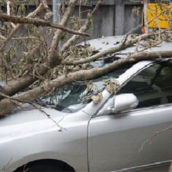 InsuranceServices11