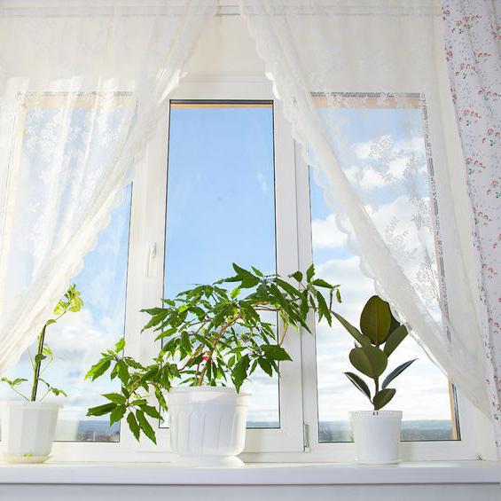 WindowTreatments3.jpeg