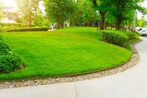 lawn-landscape.jpg