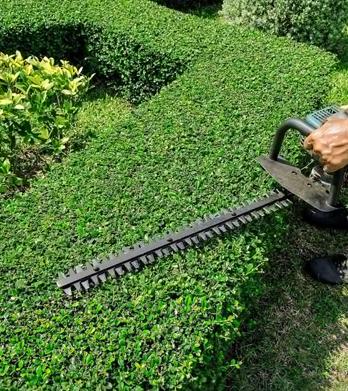 shoveling services.jpg