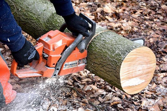 Emergency Tree Service in Stamford CT 1.jpg