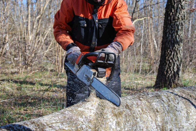 pittsburgh-tree-pros-tree-removal-2.jpg