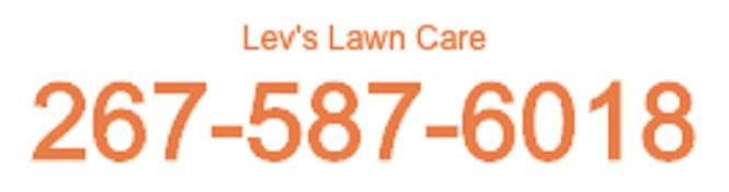 lev-s-logo.jpg