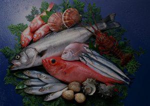 seafood 0.jpg