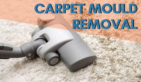 Carpet Cleaning Carrum Downs.jpg