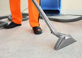 Dry-Carpet-Cleaning-Launceston.jpg