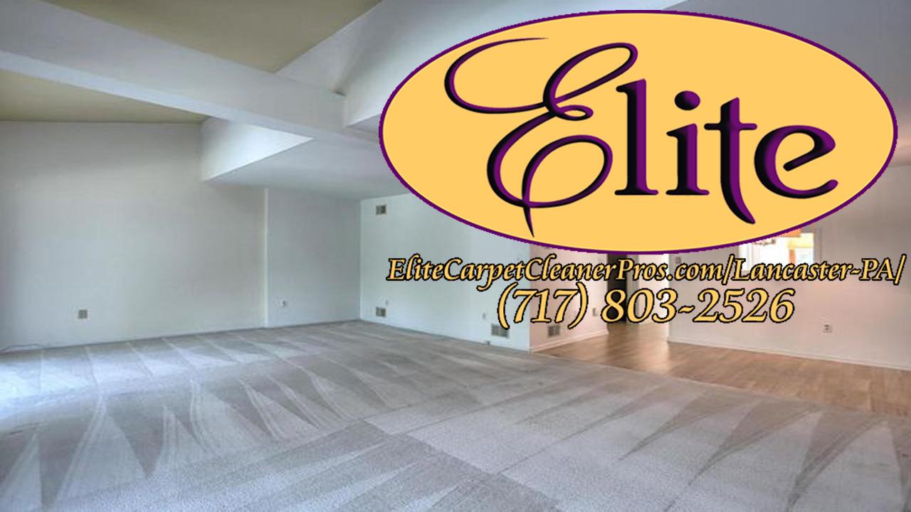 Elite Carpet Cleaner Pros-Thumbnails-Lancaster-01.jpg