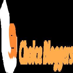 choicebloggers1_250x250.png