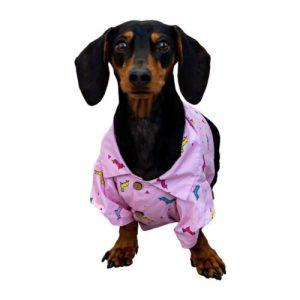 wiener dog shirt.jpg