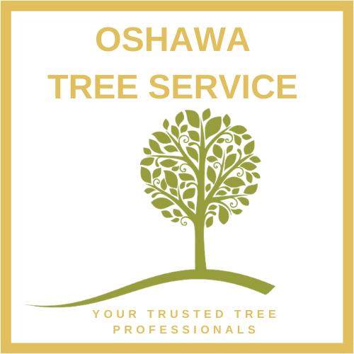 tree_service_oshawa.png