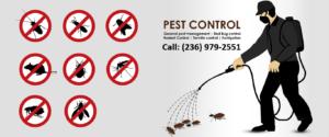Pest-control-services-vancouver