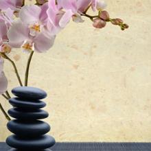 MassageTherapy1