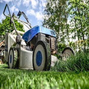 0000.logo.Lethbridge lawn care