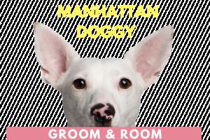 Manhattan Doggy
